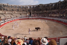 "No bloodshed at this ""friendly"" form of bull fighting at the ancient arena in Arles"
