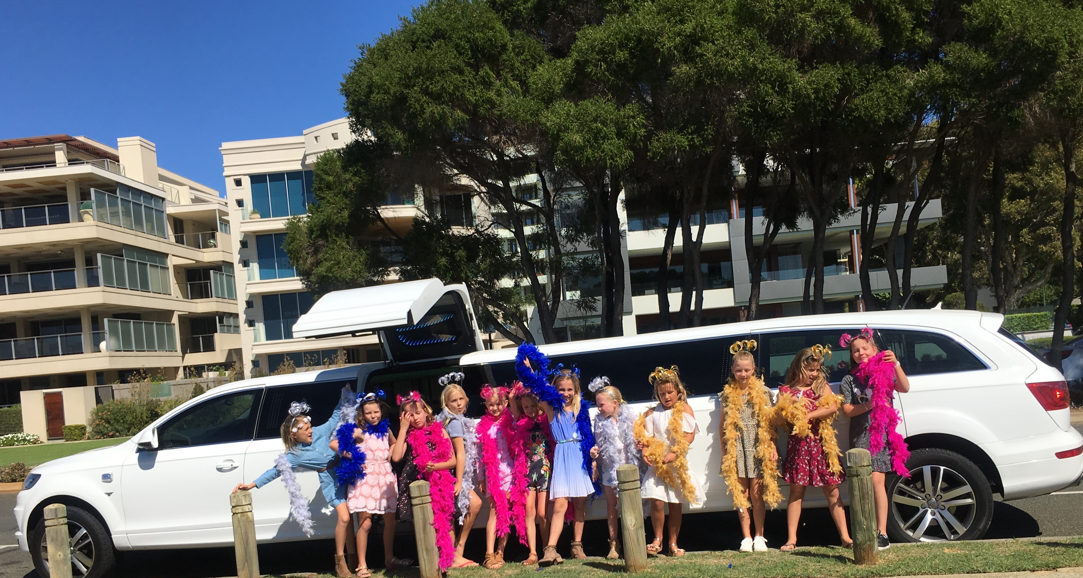 IMG_0330 - Lily Party - Limo